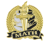 Bright Gold Math Lapel Pin