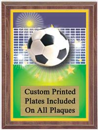 Color Soccer Plaque