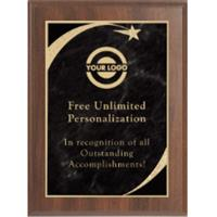 Premium Sweeping Star Plaque