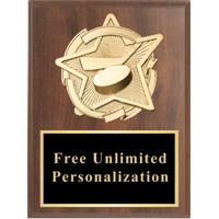 Gold Star Hockey Standout Plaque