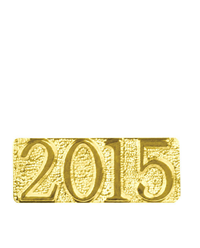 2015 Gold Chenille Pin