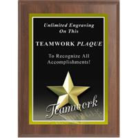Star Teamwork Graphic Plaque