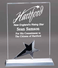 Rectangle Crystal Star Award