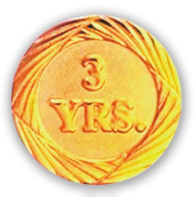 Service Pin – 3 Years