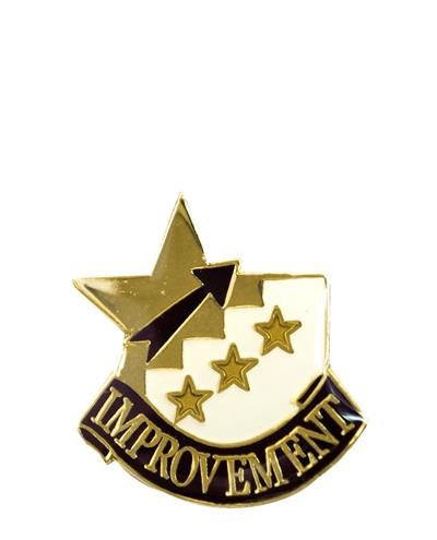 Improvement Pin