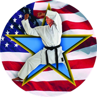 Karate Star Flag