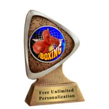 Triad Boxing Insert Award