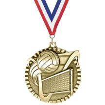 Victory Scene Volleyball Medal